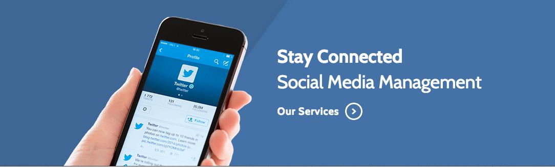 Social Media Management Services DSE Creative